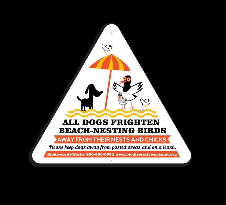 BEACH-NESTING-BIRDS-01