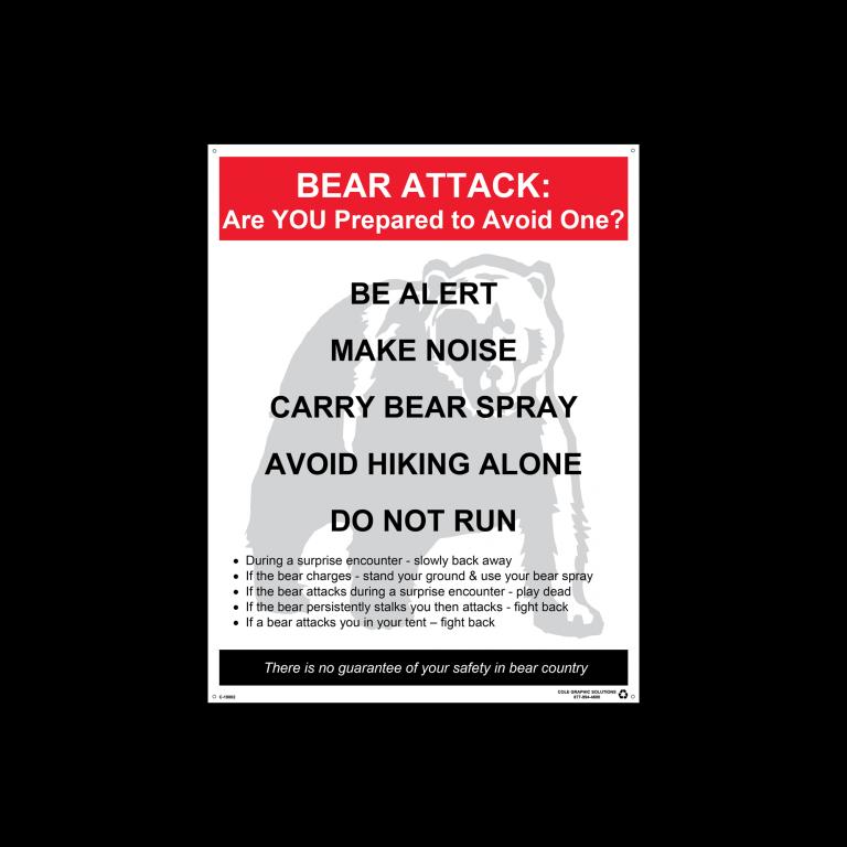 BEAR-ATTACK-01