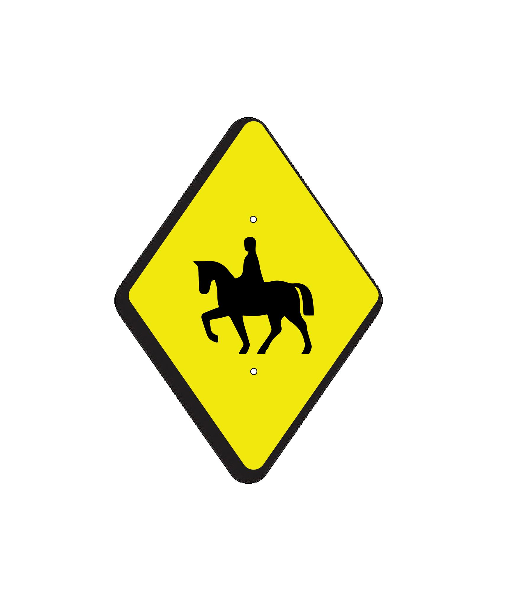 HORSE-TB-01